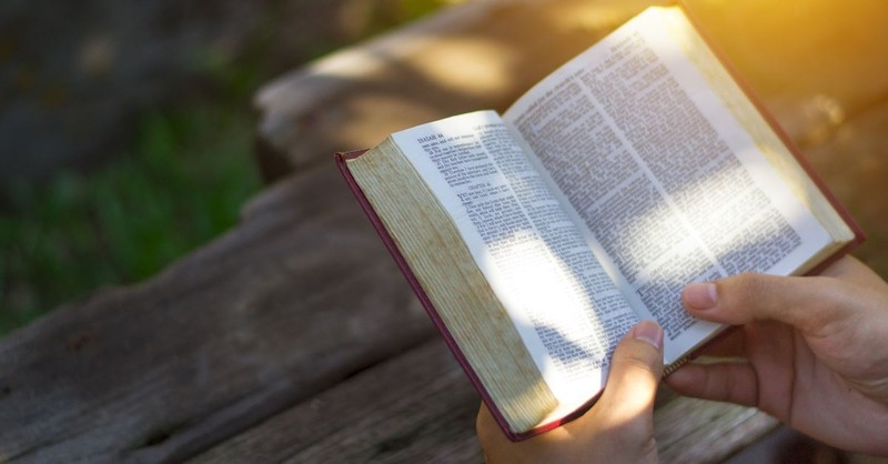 Truth, Word, Bible - Why Does This Book Have So Many Names?