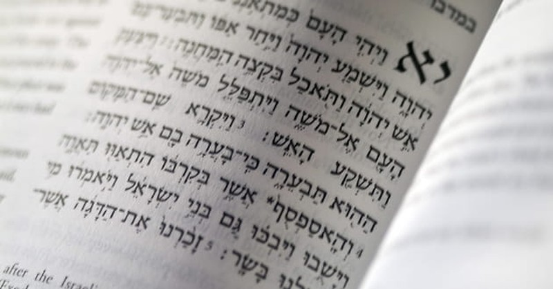 How Was It Decided Which Books Would Be Put in the Bible?