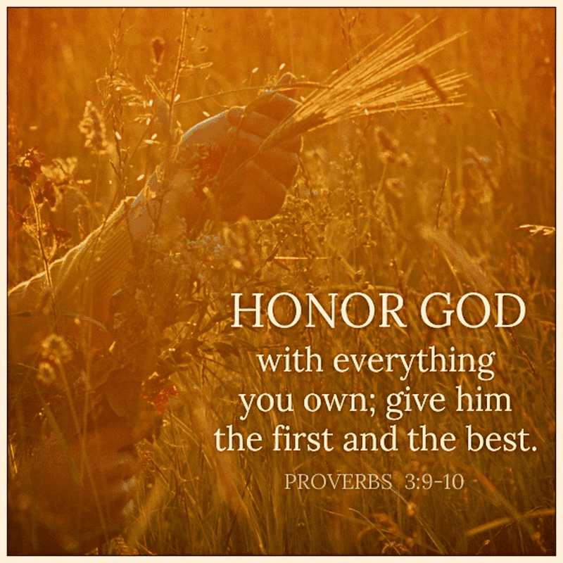 Honor God with Everything