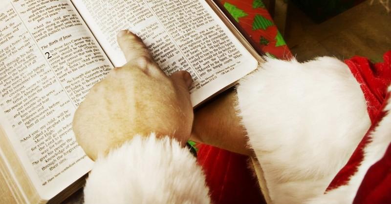 How to Read Jesus' Genealogy in the Gospel of Matthew