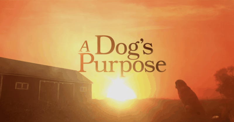 Official Trailer for <i>A Dog's Purpose</i>
