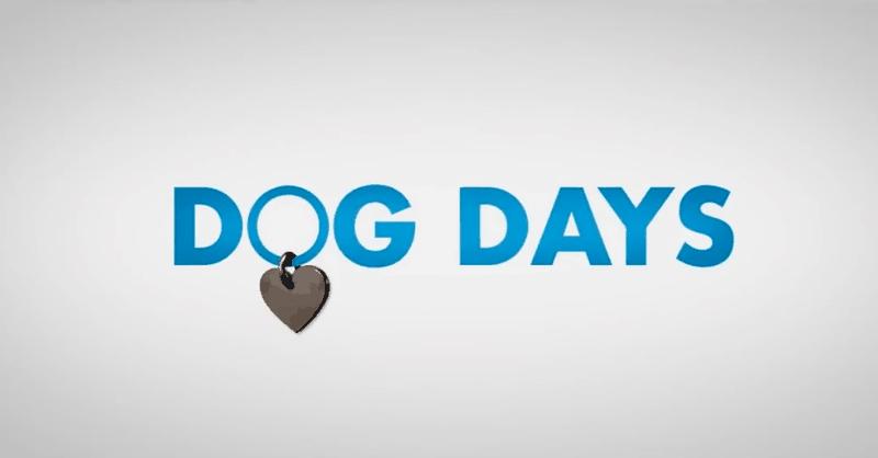 <em>Dog Days</em> Movie Trailer