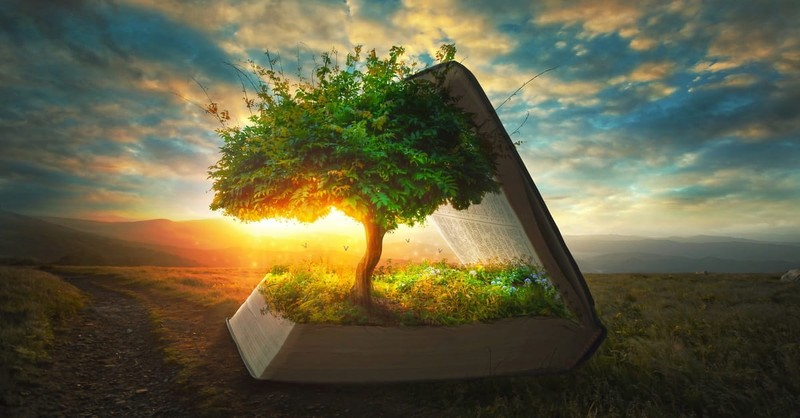 Why Should You Read the Book of Genesis in the Bible?