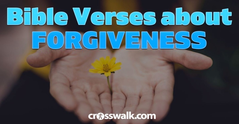 Be Encouraged to Forgive and Be Forgiven with Scripture