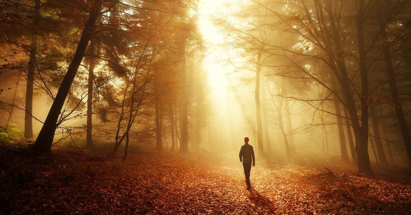 Will Following Jesus Lead to Personal Success?
