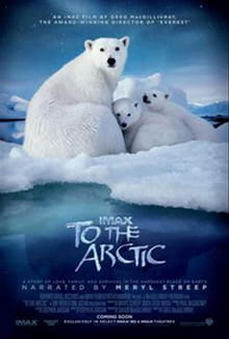 Breathtaking <i>To the Arctic</i> Lacks Focus
