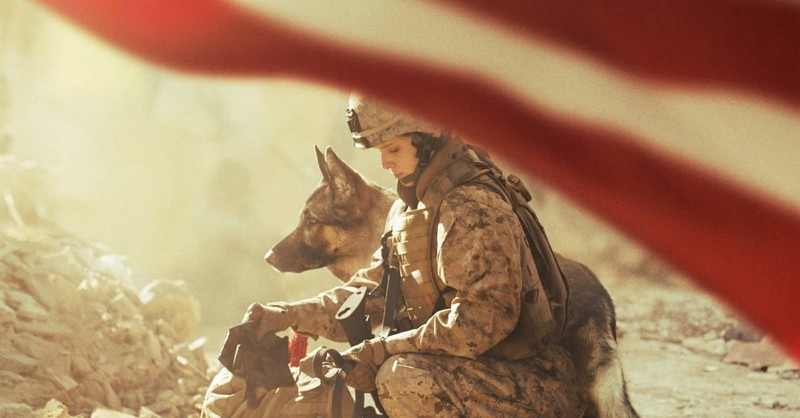 <i>Megan Leavey</i> Bonds with Dog, Not So Much with Viewers