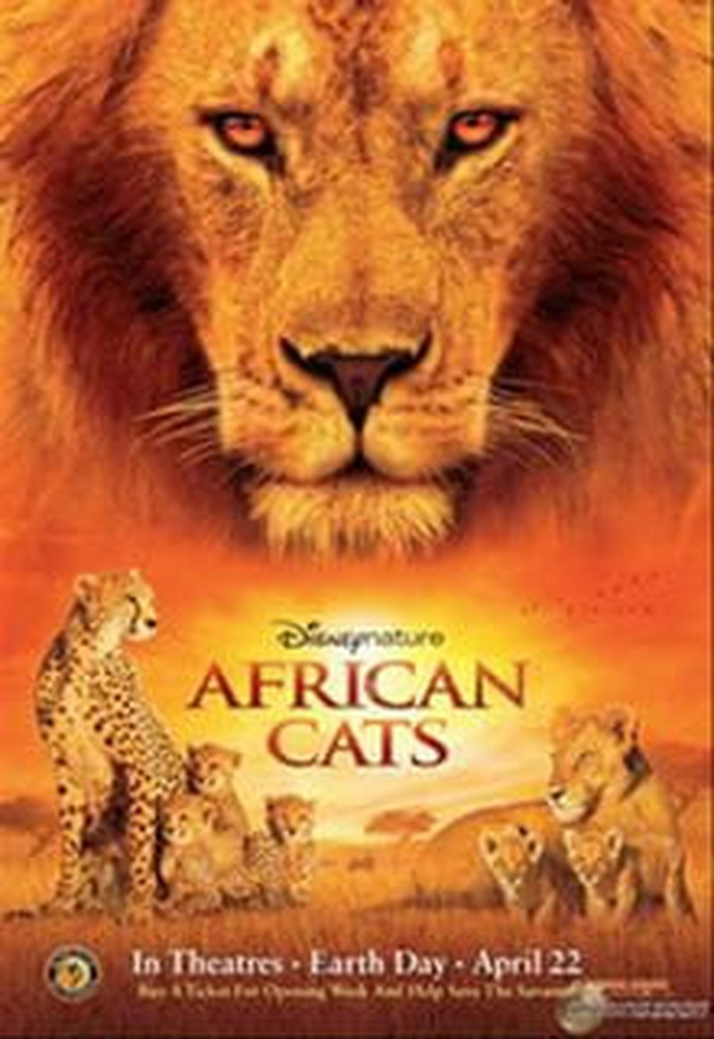 Felines Rule in Disneynature's <i>African Cats</i>