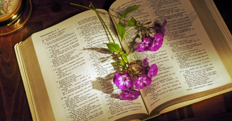 How is Song of Solomon Relevant in Today's Culture?