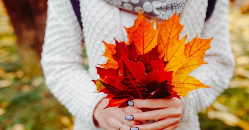 5 Ways to Develop a Lifestyle of Gratitude, No Matter What