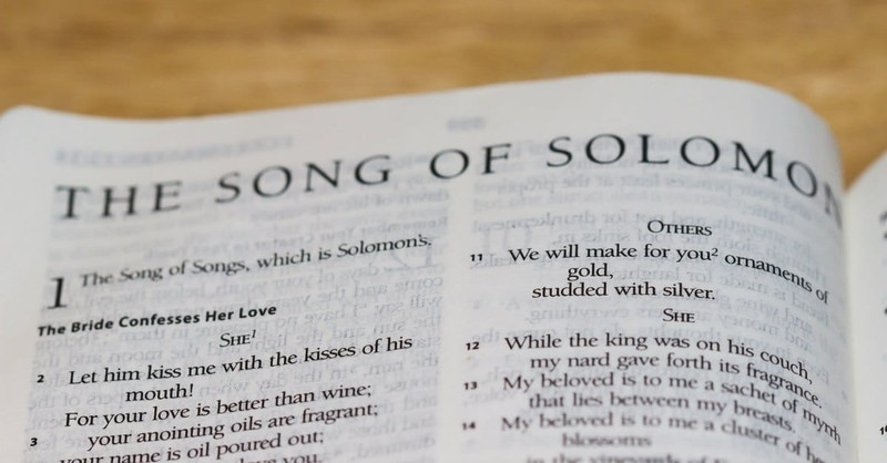 """What are """"the Little Foxes"""" in Song of Solomon 2:15?"""