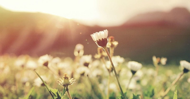 3 Ways Psalm 19 Can Renew Your Faith in an Upside-Down World