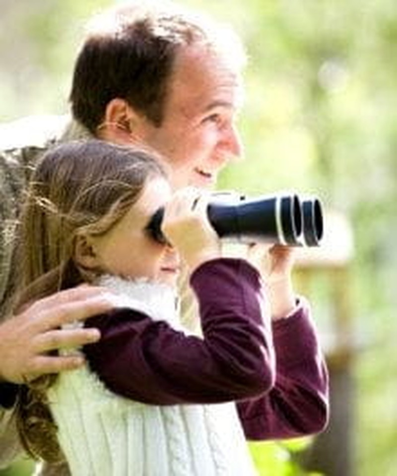 Bird Watching in Great Smoky Mountains National Park