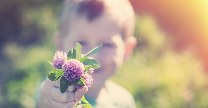Cultivating a Green Thumb: Why Gardening Should Be Part of Your Homeschool Curriculum