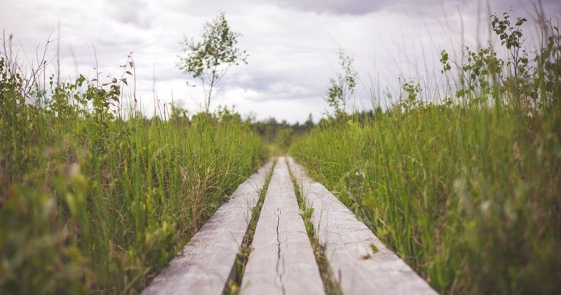How to Keep Trusting When You Feel Forgotten by God