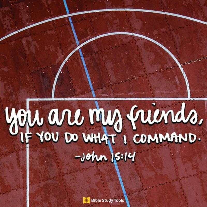 Your Daily Verse - John 15:14