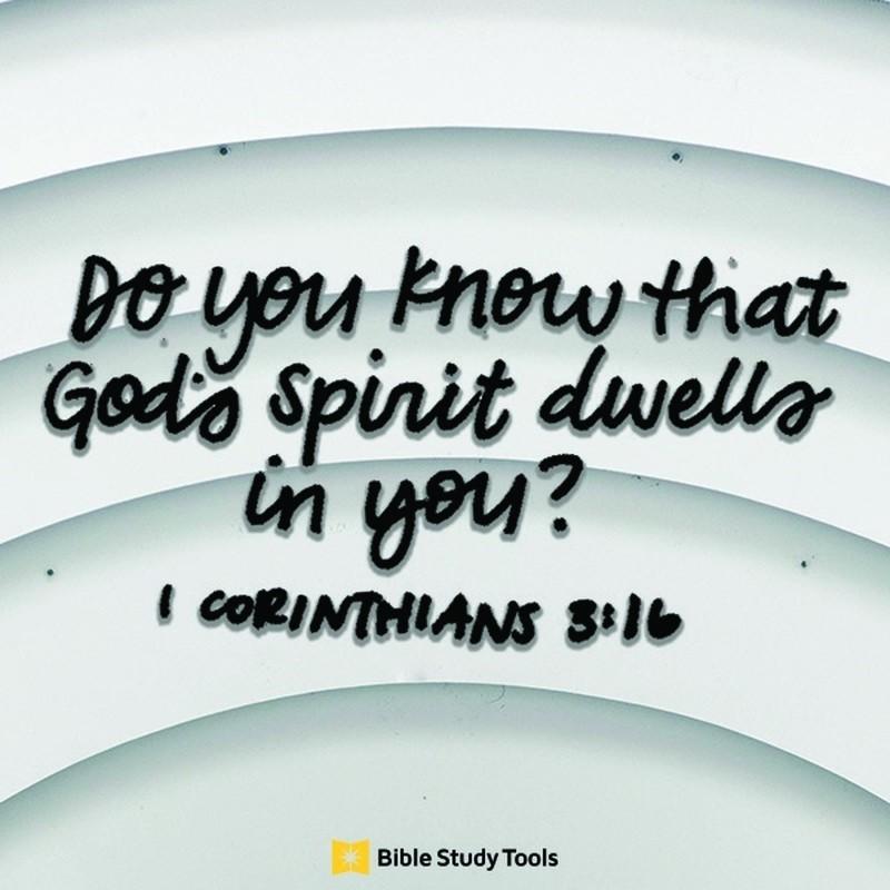 Your Daily Verse - 1 Corinthians 3:16