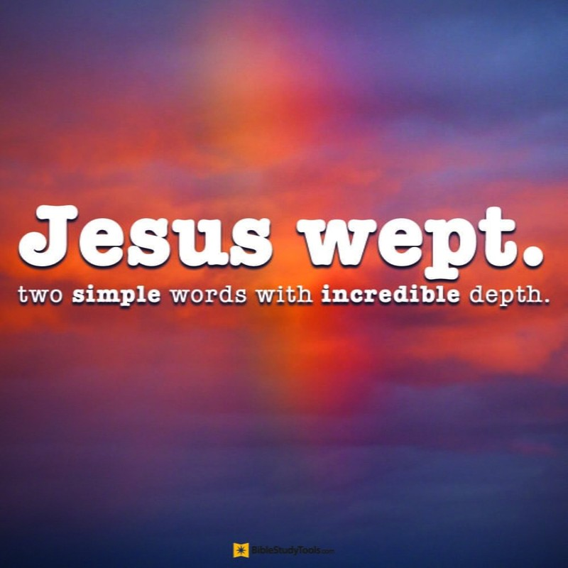 Your Daily Verse - John 11:35