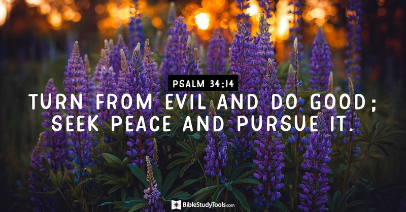 Your Daily Verse - Psalm 34:14