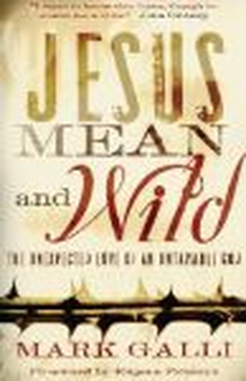 """Author Looks Beyond the Nice in """"Jesus Mean and Wild"""""""