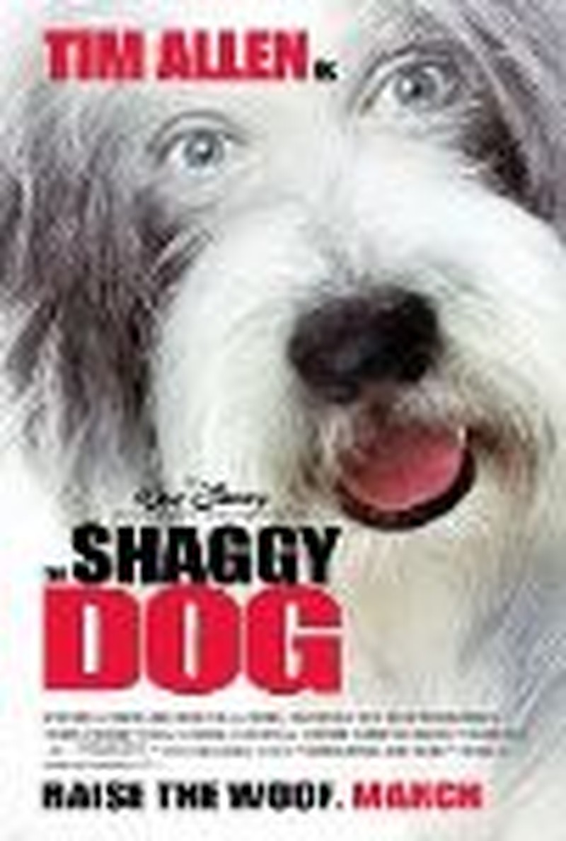 Allen Provides Some Laughs in <i>Shaggy</i> Remake