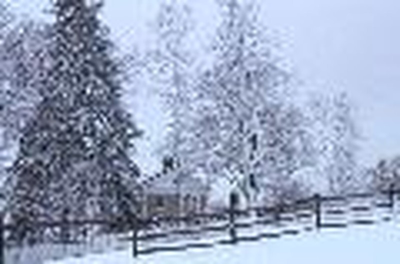 Editorial:  Homeschool Snow Days