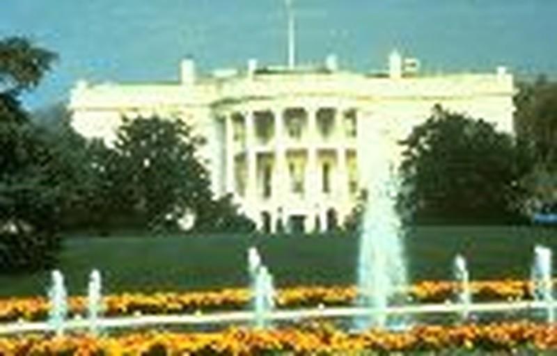 Election Day & America's Future
