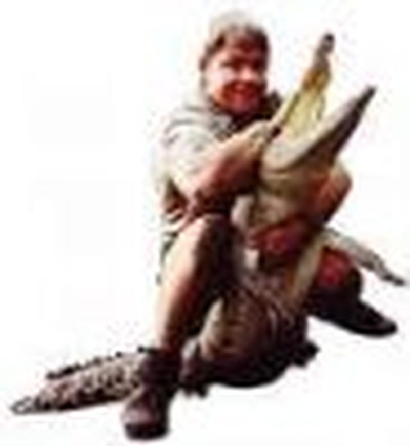 Goodbye Crocodile Hunter