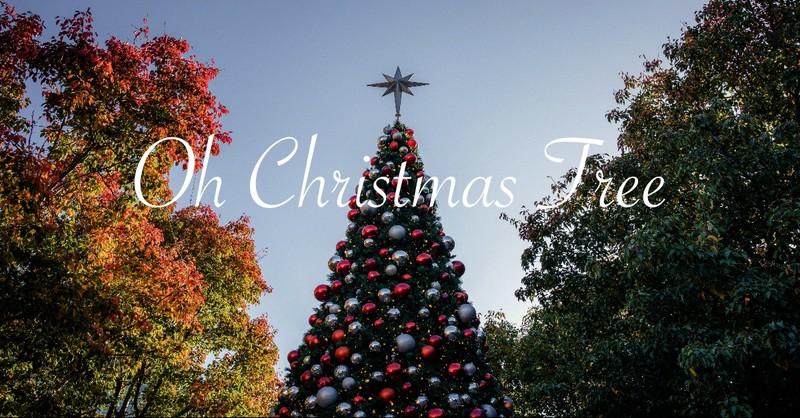 Oh Christmas Tree (O Tannenbaum)