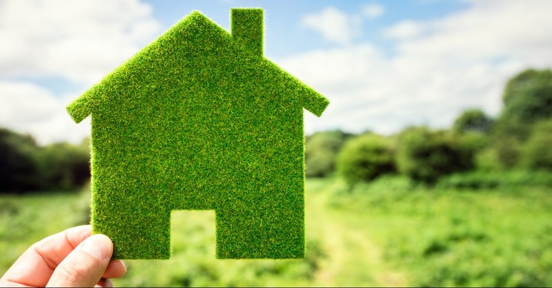 Green landscape with a small hedge in a shape of a house