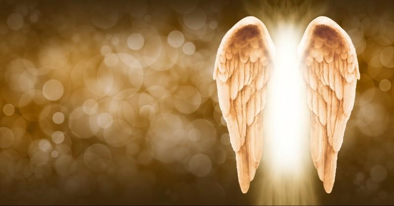 Angel wings in gold