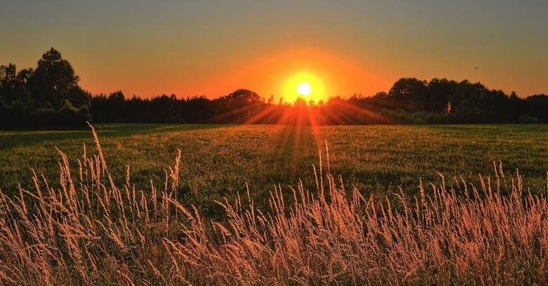 grass field during sunset sunrise tomorrow