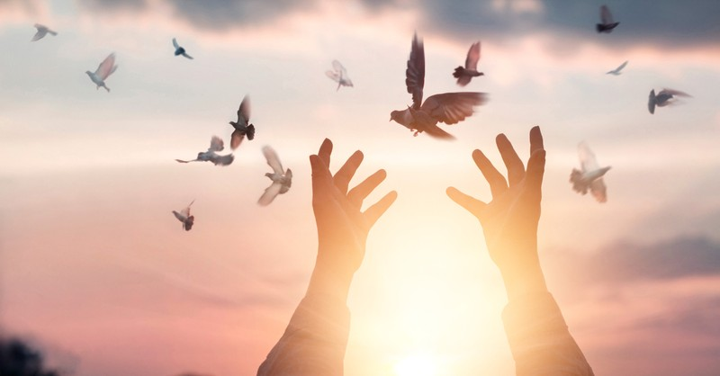 hands up releasing doves Holy Spirit spirituality, spirit of the lord is upon me