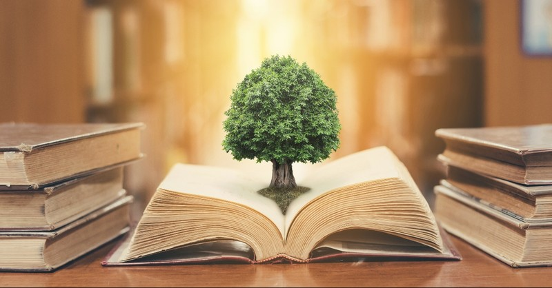 Tree sprouting from a book