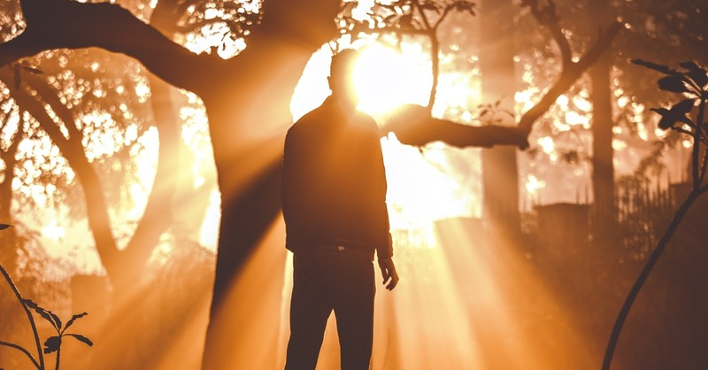 man standing in bright sunlight pouring through forest trees, blessed assurance