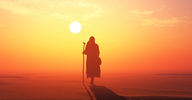 Shepherd in the desert