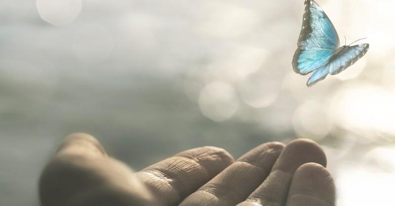 hand releasing butterfly renewal healing
