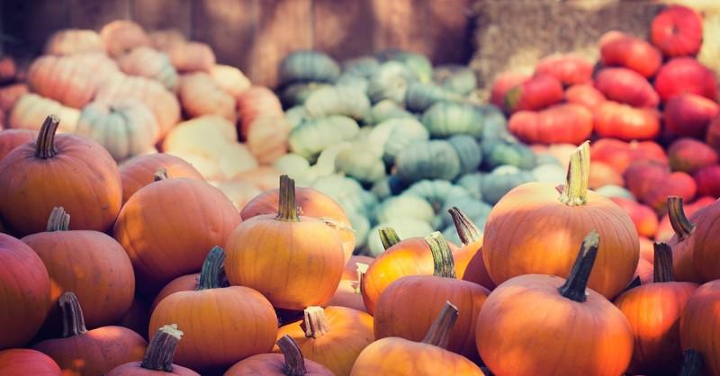 October bible verses, October scripture
