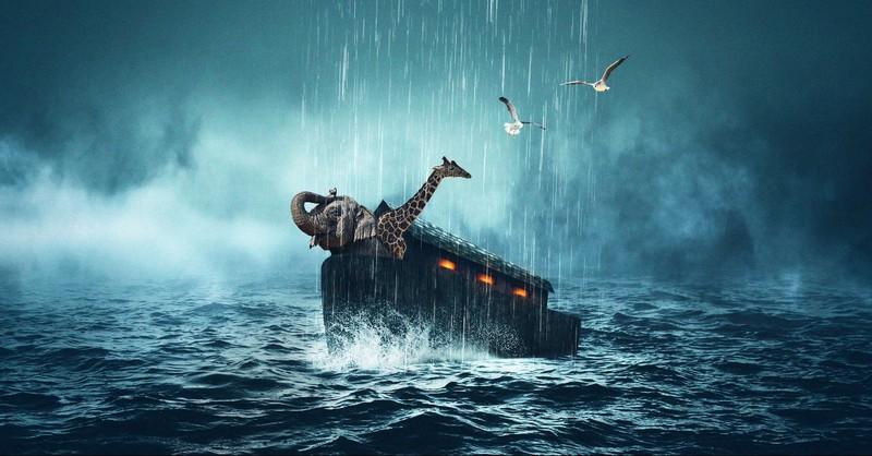 noahs ark god flood earth