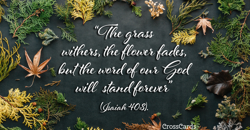 Your Daily Verse - Isaiah 40:8