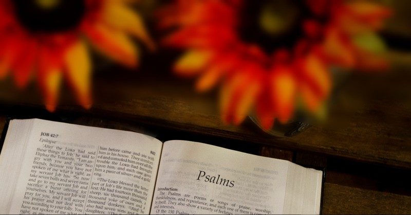 Psalm in the Bible with sunflowers