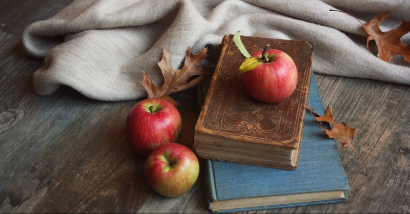 Apples laying on books and blankets