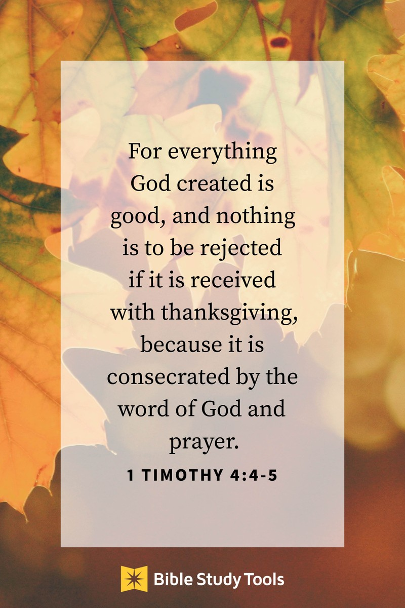 Your Daily Verse - 1 Timothy 4:4-5