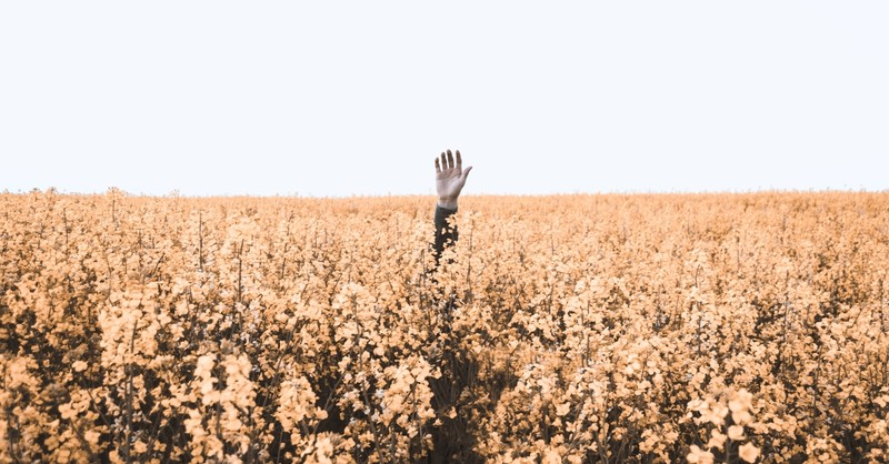 hand of lost person raised in a field, prayers when lost in unknown