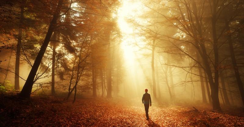 man walking toward sun in dark autumn forest