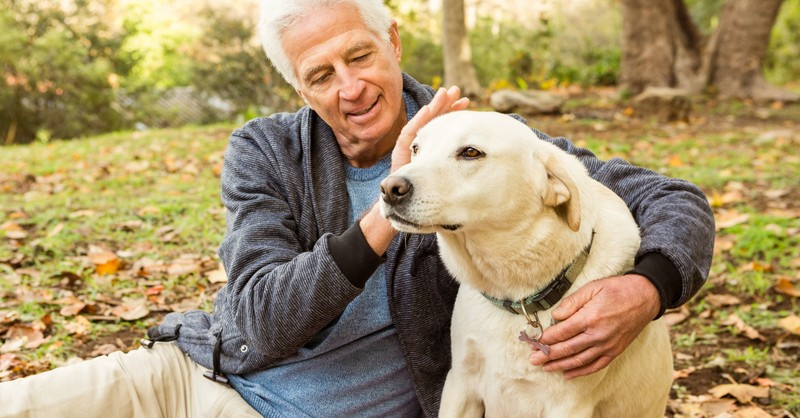 senior mature man relaxing with dog in park