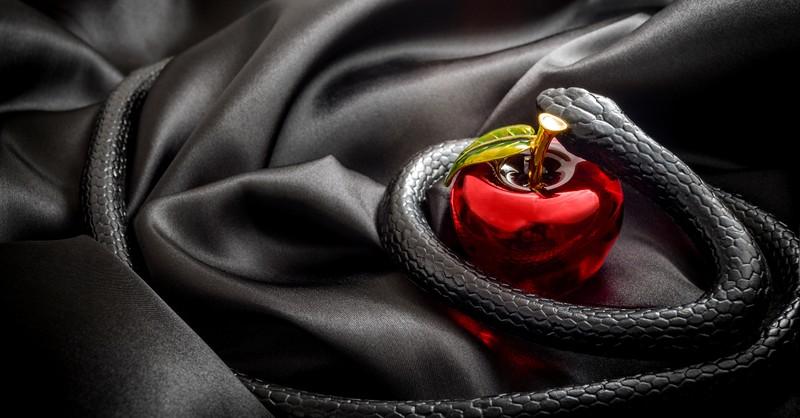 snake around apple on silk signifying the devil or satan