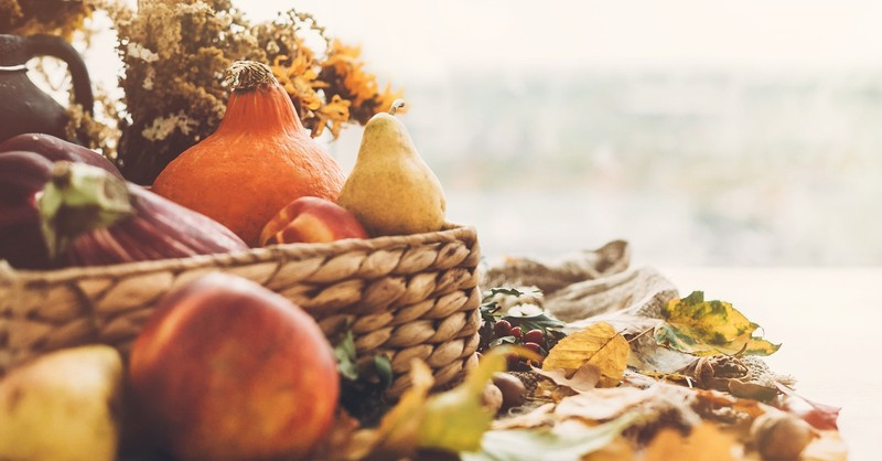 Basket of gourds and leaves