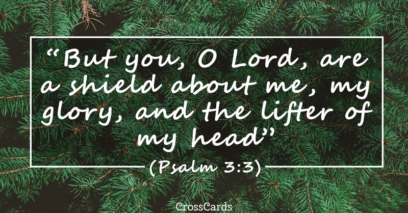 Your Daily Verse - Psalm 3:3