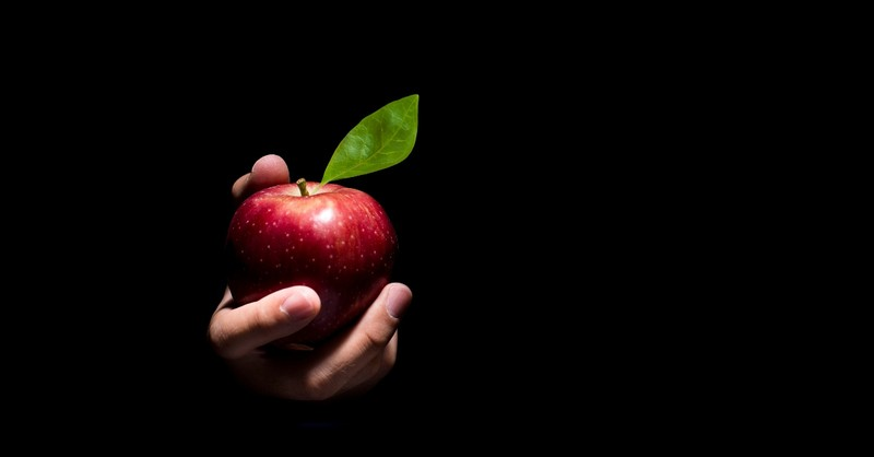 Apple held in a hand